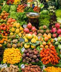 mesin pengolah buah dan sayur