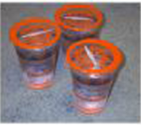 cup-gelas-plastik-maksindo