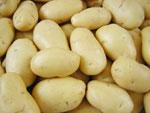 mesin-pengupas-kentang-dan-ubi