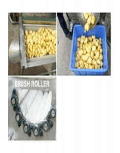 Brush Roller Root Fruit Washer-Peeler2