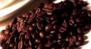 Biji-kopi-tokomesin