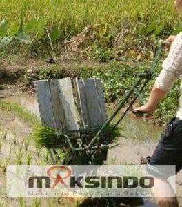 mesin penanam padi murah