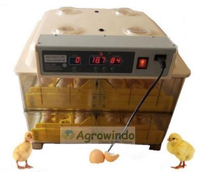 mesin penetas telur baru