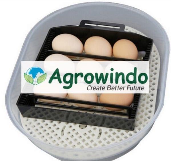 mesin penetasan telur