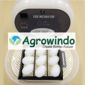 Mesin Tetas Telur 12 Butir Otomatis – AGR-JN12