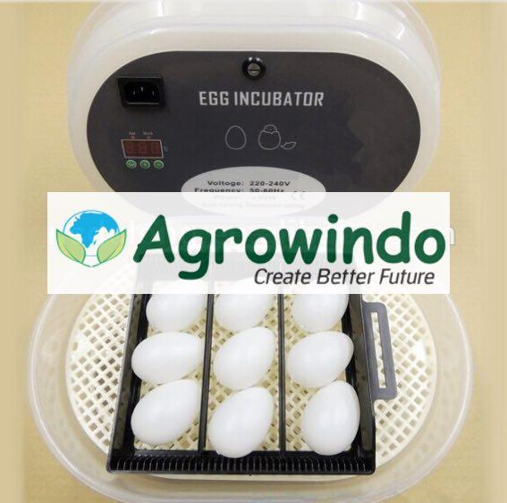 spesifikasi mesin tetas telur