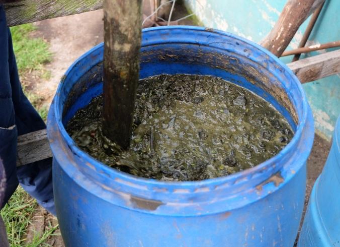 Cara Membuat Pupuk Kompos Dari Sampah Organik Untuk Kesehatan Lingkungan Anda